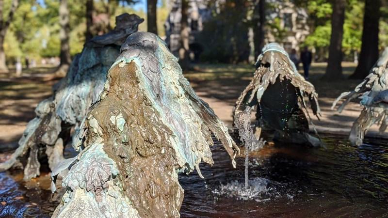 Các giọt nước được giữ lại khá tốt, tách bạch hẳn với phông nền phía sau