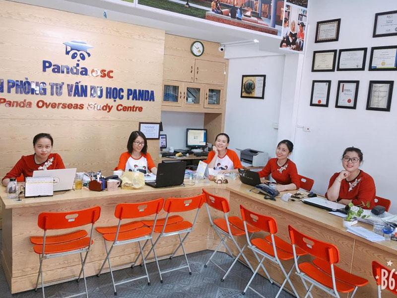 Tìm hiểu về tổ chức giáo dục PANDA: Trung tâm tư v